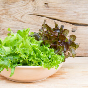 Mélange de salade